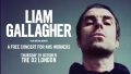 Liam Gallagher Free Concert