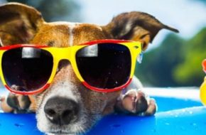 8 Ways for NHS Staff to stay cool this Summer!